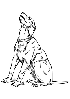 dibujo-para-colorear-perro-llorando-tt17345